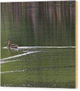 Full Speed Ahead Wood Print
