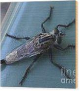 Funky Bug Wood Print