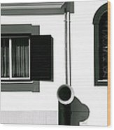 Funnel Alert Wood Print