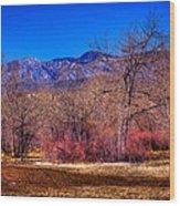 Furrowed Field At South Platte Park Wood Print