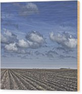Furrows In A Texas Field Wood Print