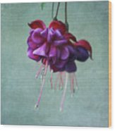 Fuschia Flower Wood Print