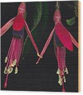 Fuschia Flowers Atlantic Forest Wood Print