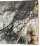 Fuzzy Wood Print