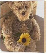 Fuzzy Teddy Wood Print