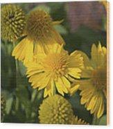 Gaillarde Mesa Yellow Wood Print