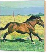 Gallope Wood Print
