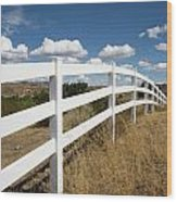 Galloping Fence Wood Print