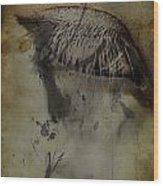Galloping Glares  Wood Print