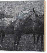 Galloping Stones Wood Print