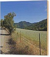 Galls Creek Road In Southern Oregon Wood Print