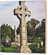 Galway Monastic Ruins 1 Wood Print by Douglas Barnett