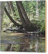 Gamble Creek3 Wood Print
