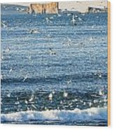 Gannets In Flight And Perce Rock Wood Print