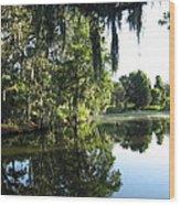 Garden At Magnolia Plantation Wood Print