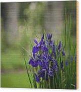 Garden Blue Irises Wood Print