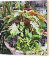 Garden Bowl Of Foliage Wood Print