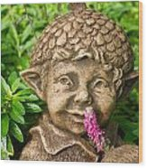 Garden Elf 2 Wood Print