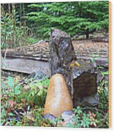 Garden Energy Rocks Wood Print