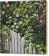 Garden Fence With Roses Wood Print by Elena Elisseeva
