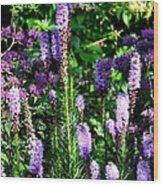Garden Flowers 1 Wood Print