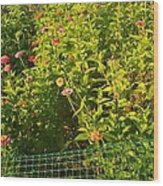 Garden Flowers Mixed Colors Wood Print