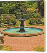 Garden Fountain 03 Wood Print