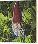 Garden Gnome No 0065 Wood Print