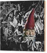 Garden Gnome With Gray Background Wood Print