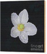 Garden Jewel And Rain Wood Print