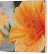 Garden Lily Wood Print