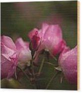 Garden Of Grace Wood Print