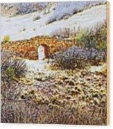 Garden Of The Gods - Bridge Panorama Wood Print