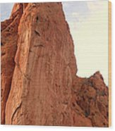 Garden Of The Gods 2 Wood Print
