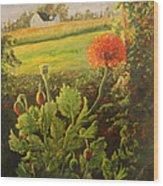 Garden Poppies Wood Print