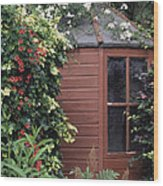 Garden Shed Wood Print by Archie Young