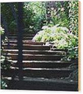Garden Stairs Wood Print