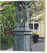 Garden Statuary In The French Quarter Wood Print