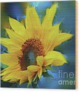 Garden Sun Wood Print