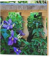 Garden Wall With Periwinkle Flowers Wood Print