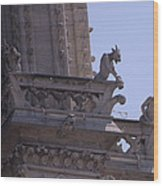 Gargoyles At Notre Dame Cathedral Wood Print