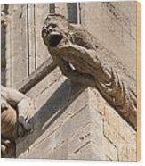 Gargoyles On Ely Cathedral Wood Print