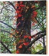 Garland Of Autumn Wood Print