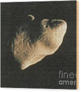 Gaspra, S-type Asteroid, 1991 Wood Print