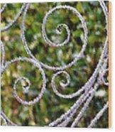 Gate Of Circles Wood Print