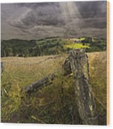 Gate To Heaven Wood Print