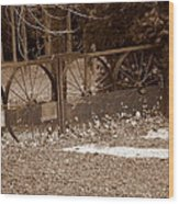 Gate To The Past Wood Print