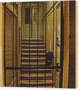 Gated Stairwell At Night Wood Print