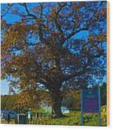 Gateway To Carmel Racecourse Wood Print
