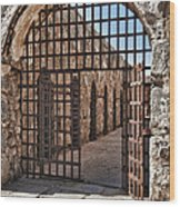 Gateway To The Unknown Wood Print by Sandra Bronstein